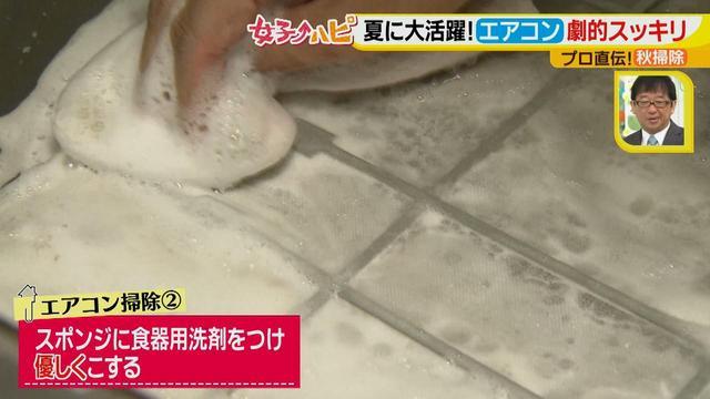 画像8: 今がオススメ!秋掃除で年末掃除がら~くらく♪ 夏に酷使したあの電化製品の汚れをスッキリ落とす!