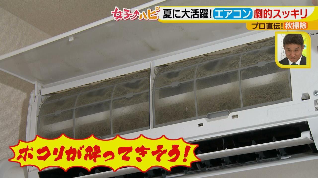 画像3: 今がオススメ!秋掃除で年末掃除がら~くらく♪ 夏に酷使したあの電化製品の汚れをスッキリ落とす!
