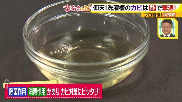 画像3: 今がオススメ!秋掃除で年末掃除がら~くらく♪ カビの繁殖を防ぐには根付く前に撃退が効果的!