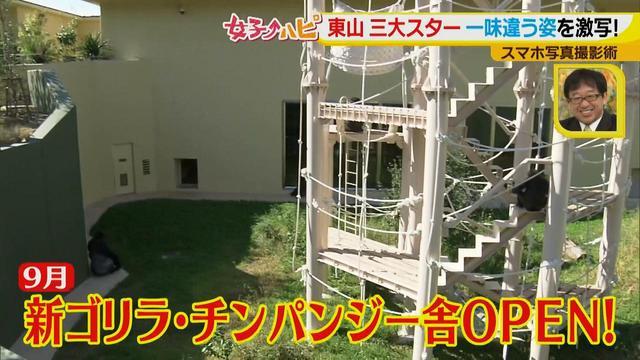 画像14: この秋使えるスマホ写真術!in東山動植物園 こども&動物の2ショットを楽しく撮るコツ♪