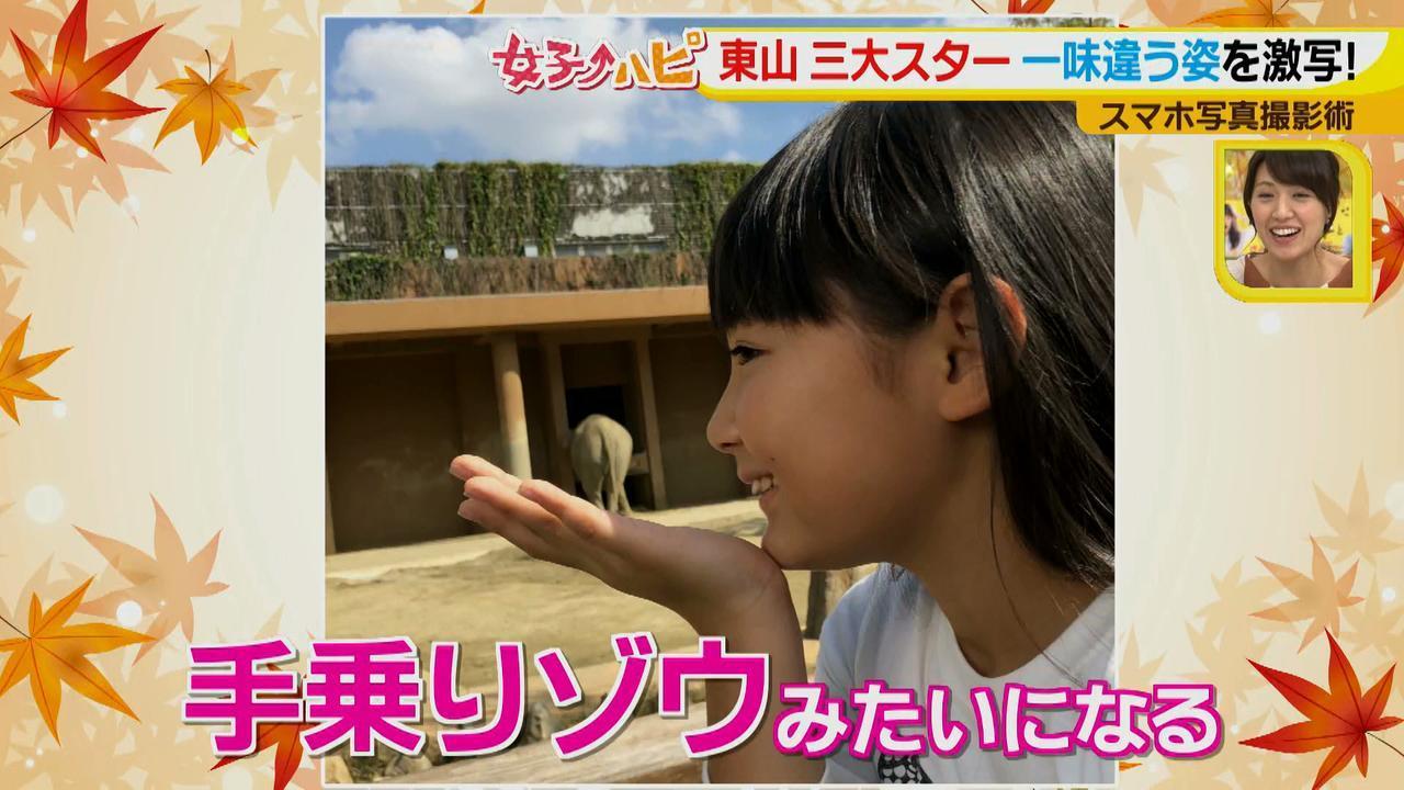 画像9: この秋使えるスマホ写真術!in東山動植物園 こども&動物の2ショットを楽しく撮るコツ♪