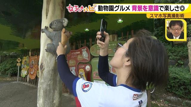 画像3: この秋使えるスマホ写真術!in東山動植物園 グルメ写真は背景を♪人物写真は足位置を意識して♪