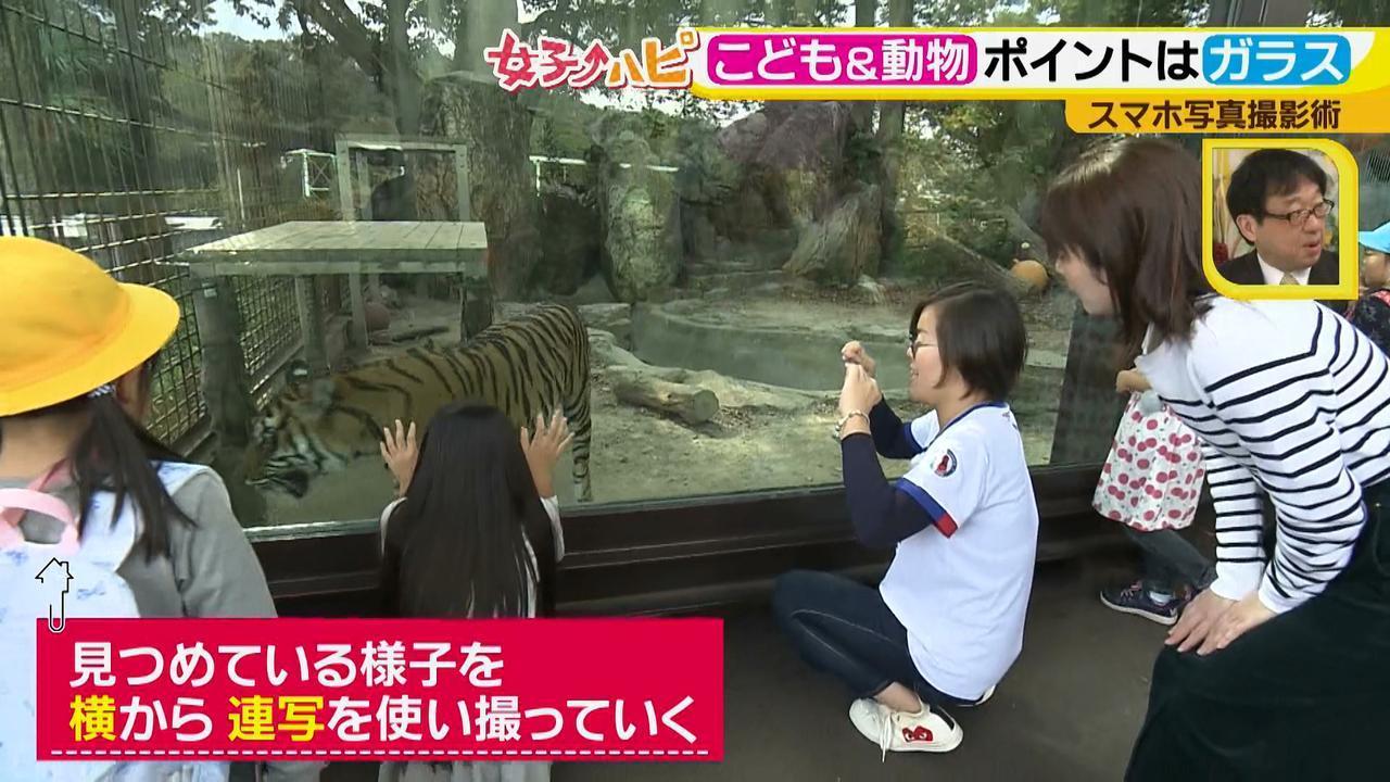 画像5: この秋使えるスマホ写真術!in東山動植物園 こども&動物の2ショットを楽しく撮るコツ♪