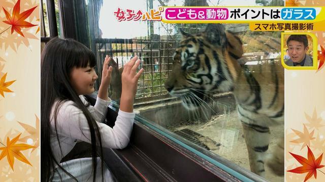 画像6: この秋使えるスマホ写真術!in東山動植物園 こども&動物の2ショットを楽しく撮るコツ♪