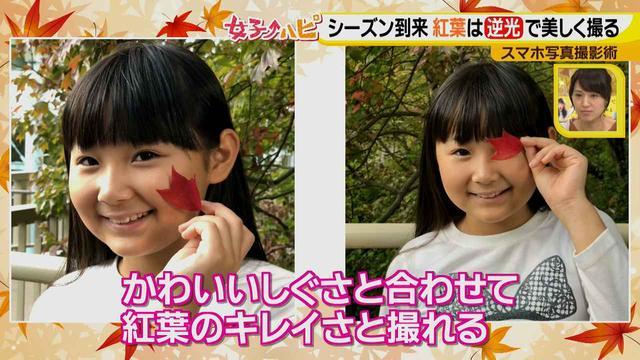 画像7: この秋使えるスマホ写真術!in東山動植物園 紅葉を撮る位置は?失敗した写真の救済策も♪