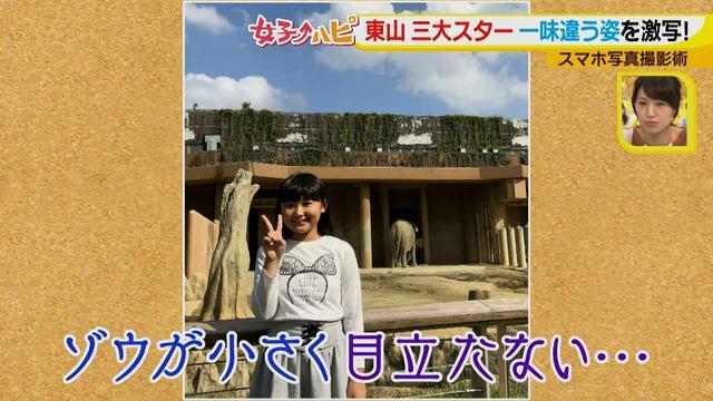 画像8: この秋使えるスマホ写真術!in東山動植物園 こども&動物の2ショットを楽しく撮るコツ♪