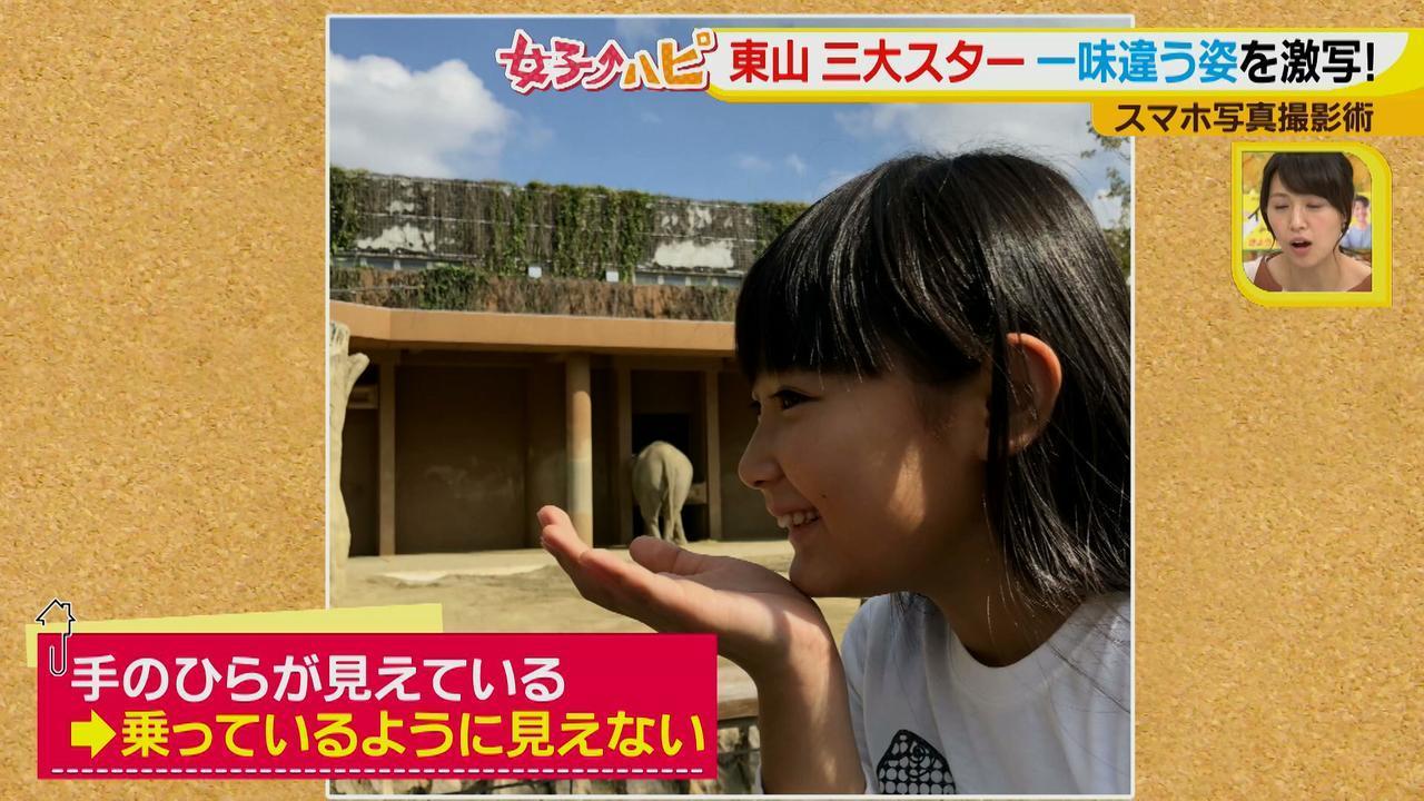 画像10: この秋使えるスマホ写真術!in東山動植物園 こども&動物の2ショットを楽しく撮るコツ♪
