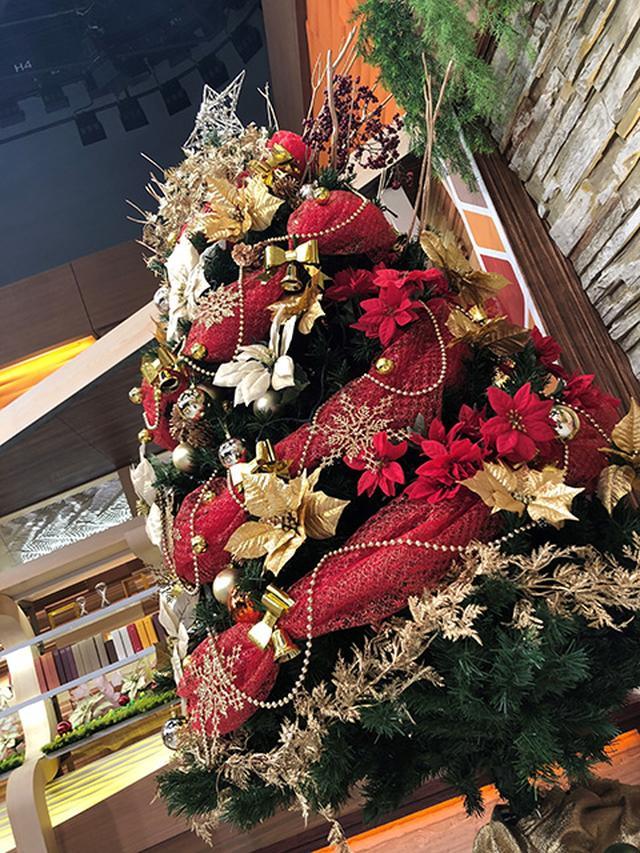 画像: 煌びやかなクリスマスツリー!!
