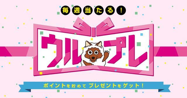 画像: ウルプレ - 名古屋テレビ【メ~テレ】
