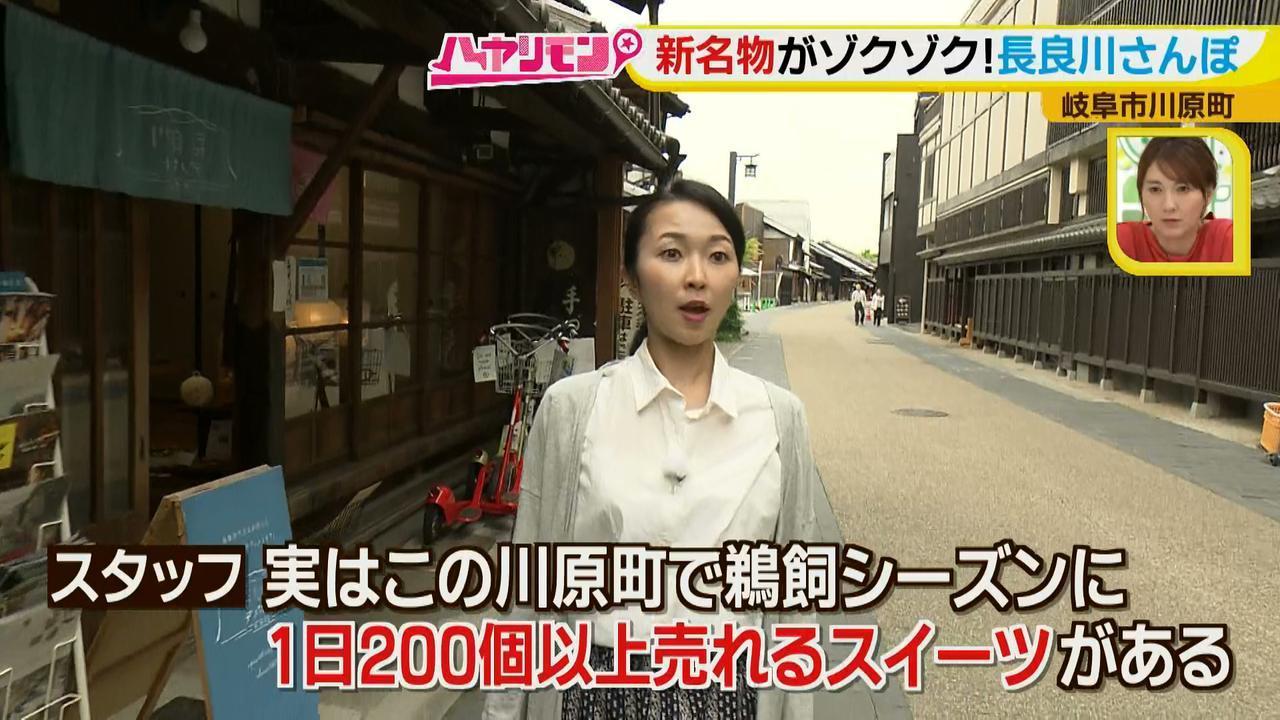 画像3: 岐阜・長良川ぶらり旅! あの銘菓が行列必至の映えスイーツに♪ かわいい新作も登場!