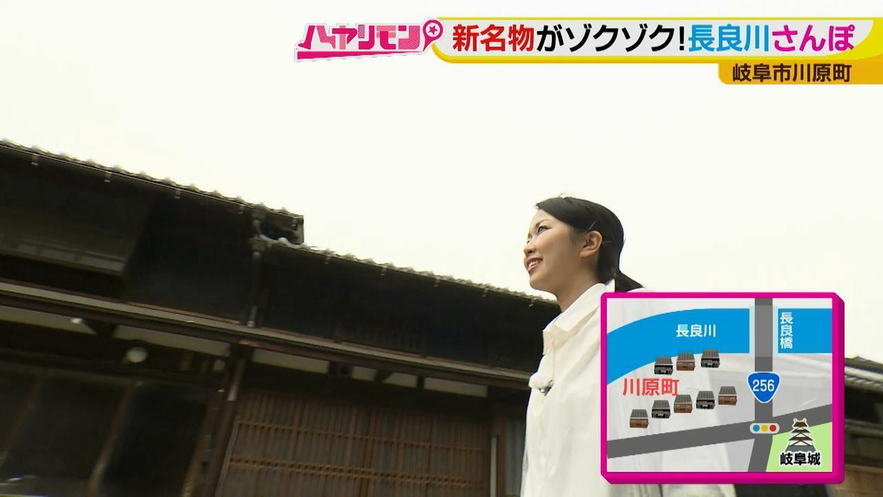 画像1: 岐阜・長良川ぶらり旅! 古民家食堂で手間暇かけた鮎づくし御膳を堪能♪