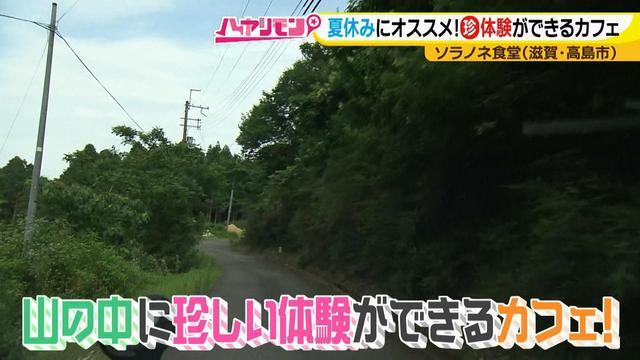 画像1: 夏の琵琶湖旅! 大自然の中で珍しい体験ができるカフェ