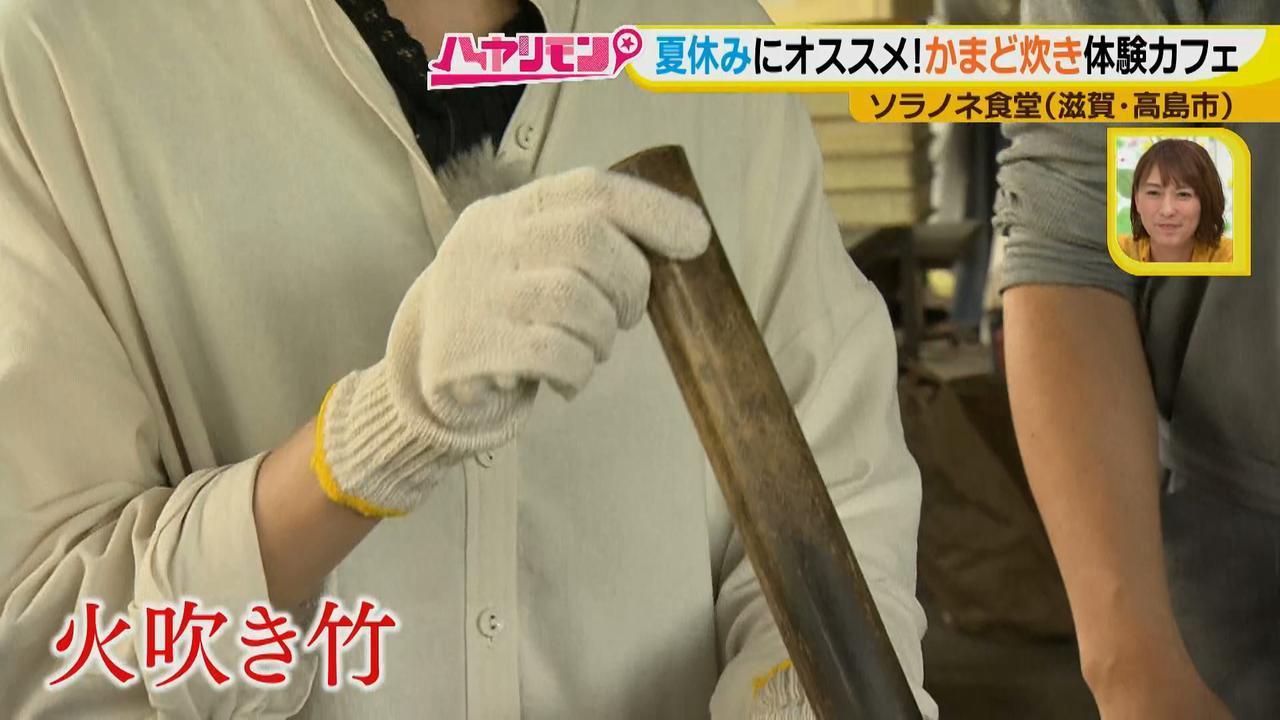 画像5: 夏の琵琶湖旅! 大自然の中で珍しい体験ができるカフェ