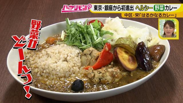 画像4: 栄養満点!! 名古屋のスパイスカレーを大調査