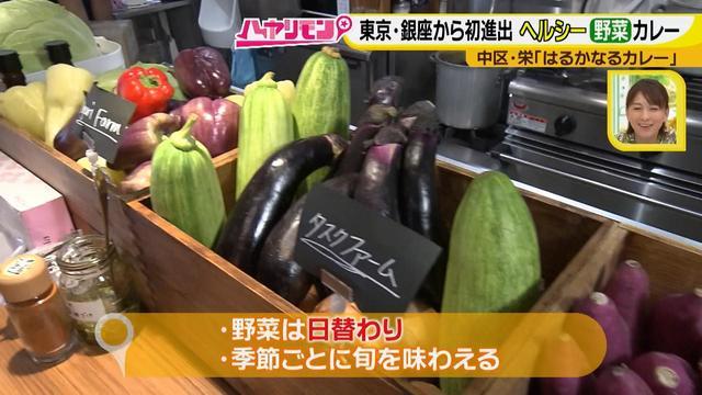 画像10: 栄養満点!! 名古屋のスパイスカレーを大調査