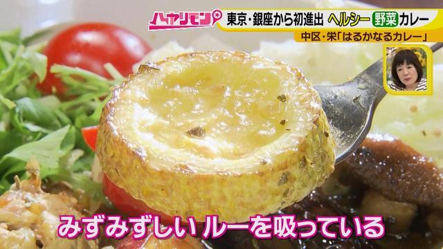 画像12: 栄養満点!! 名古屋のスパイスカレーを大調査
