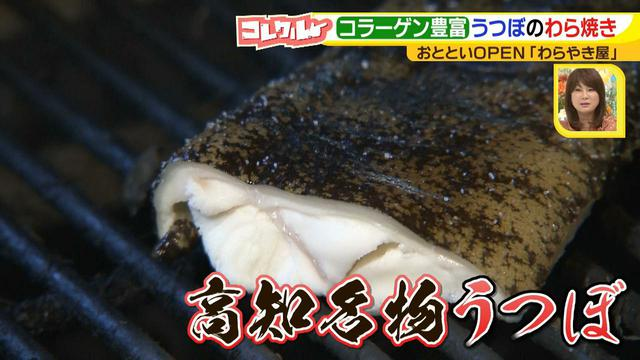 画像13: 名古屋へ初進出! 藁で豪快に焼く、おいしい高知名物のお店とは?!