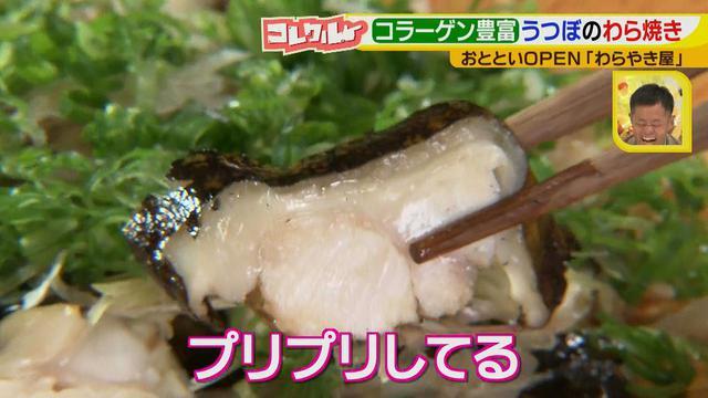 画像15: 名古屋へ初進出! 藁で豪快に焼く、おいしい高知名物のお店とは?!