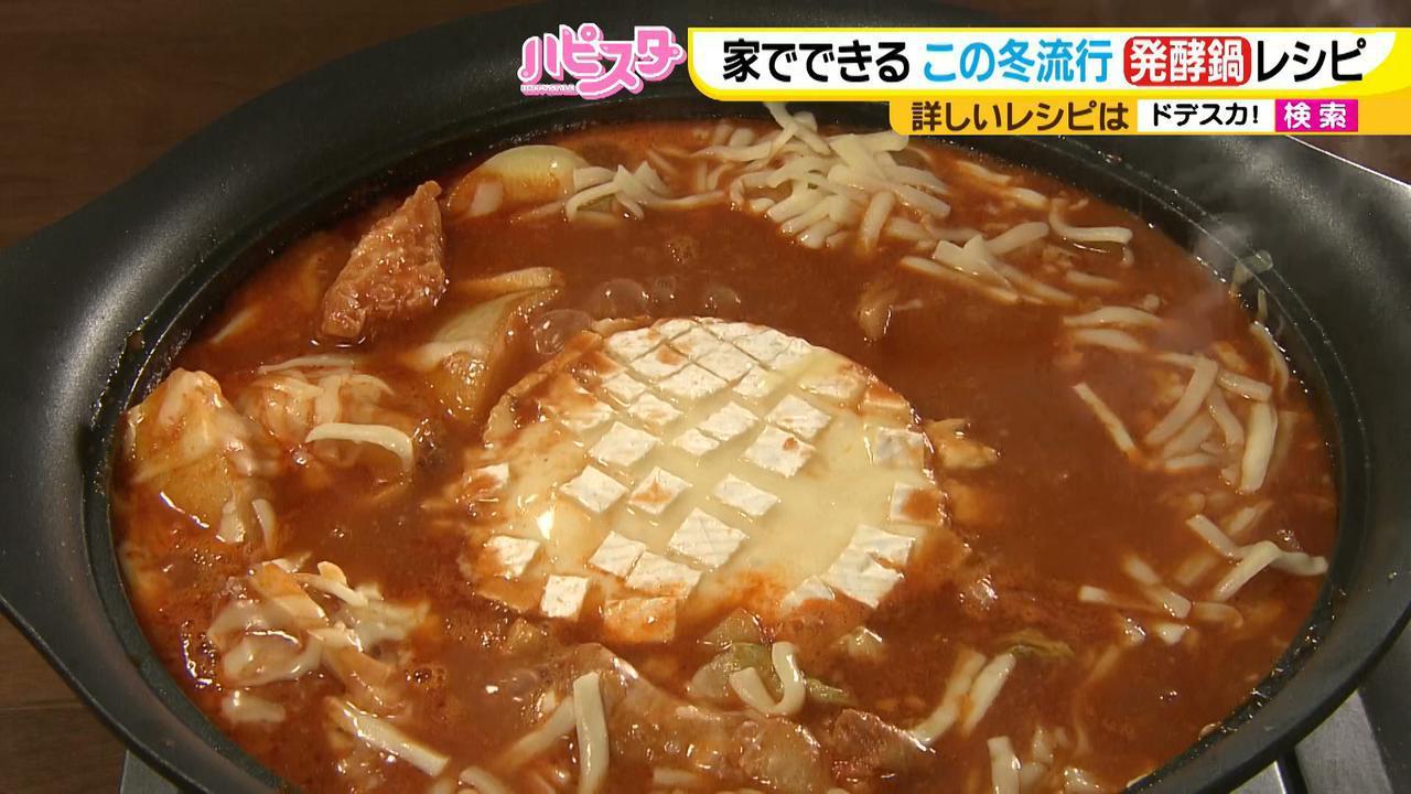 画像10: おうちで簡単にできる! 栄養満点、話題の発酵鍋を作ろう♪