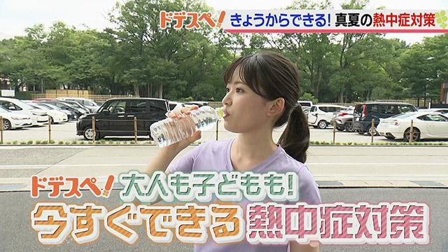 画像: ドデスぺ「熱中症対策(1)」|2020年8月17日(月)|ドデスカ! - 名古屋テレビ【メ~テレ】