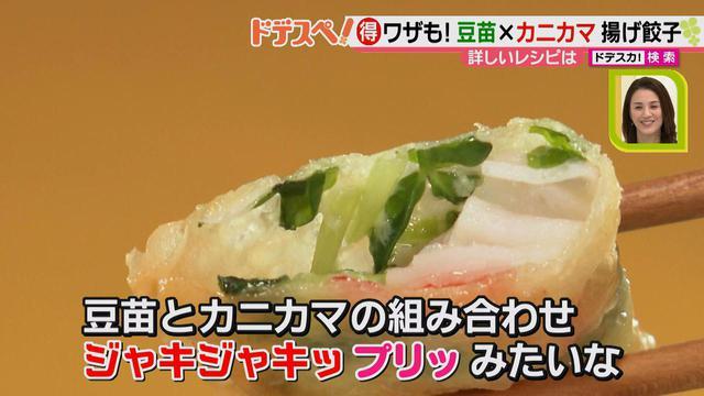 画像10: 野菜の価格高騰にも負けない! コスパ&栄養抜群、簡単おいしい揚げ餃子レシピ♪