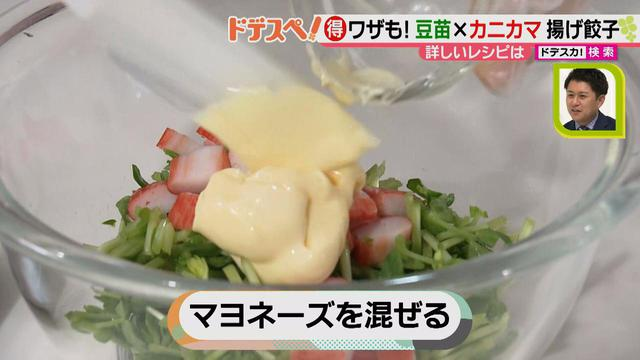 画像4: 野菜の価格高騰にも負けない! コスパ&栄養抜群、簡単おいしい揚げ餃子レシピ♪