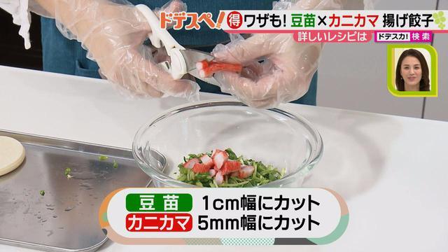画像3: 野菜の価格高騰にも負けない! コスパ&栄養抜群、簡単おいしい揚げ餃子レシピ♪