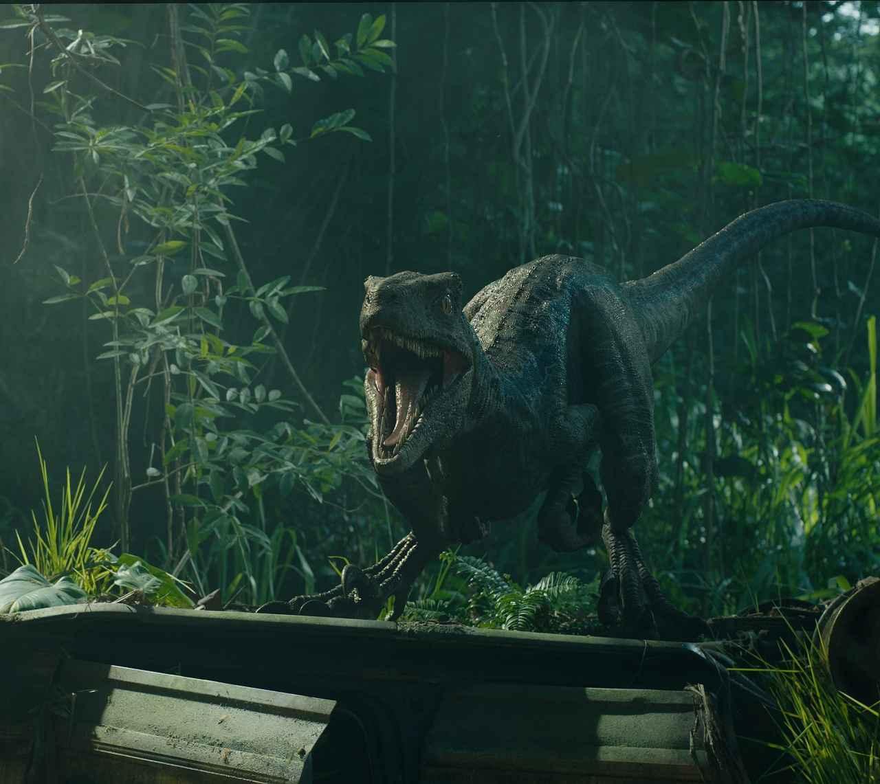 Industrial Light And Magic News: 癒され必至! 恐竜と人間の絆が垣間見える『ジュラシック・ワールド/炎の王国』本編映像解禁!