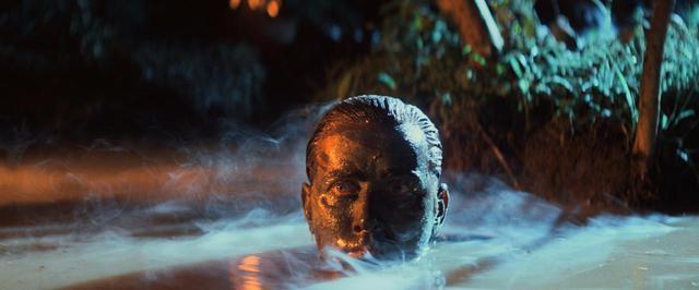 画像: コッポラ監督の戦争大作をIMAX®で体感せよ!『地獄の黙示録 ファイナル・カット』公開決定 - SCREEN ONLINE(スクリーンオンライン)