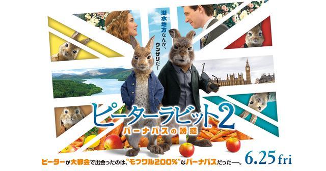画像: 映画『ピーターラビット2/バーナバスの誘惑』6月25日(金)全国ロードショー | オフィシャルサイト | ソニー・ピクチャーズ
