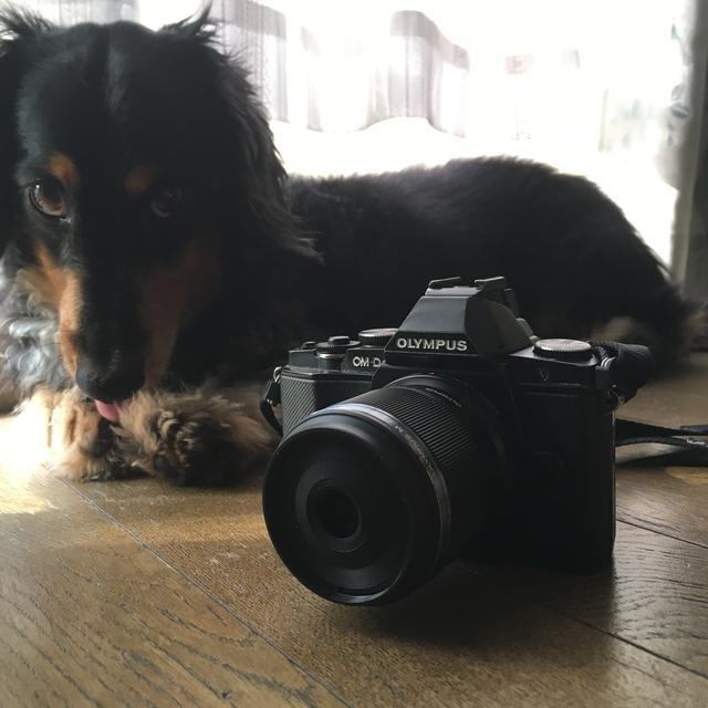 画像: M.ズイコーデジタル ED30mmF3.5 Macro