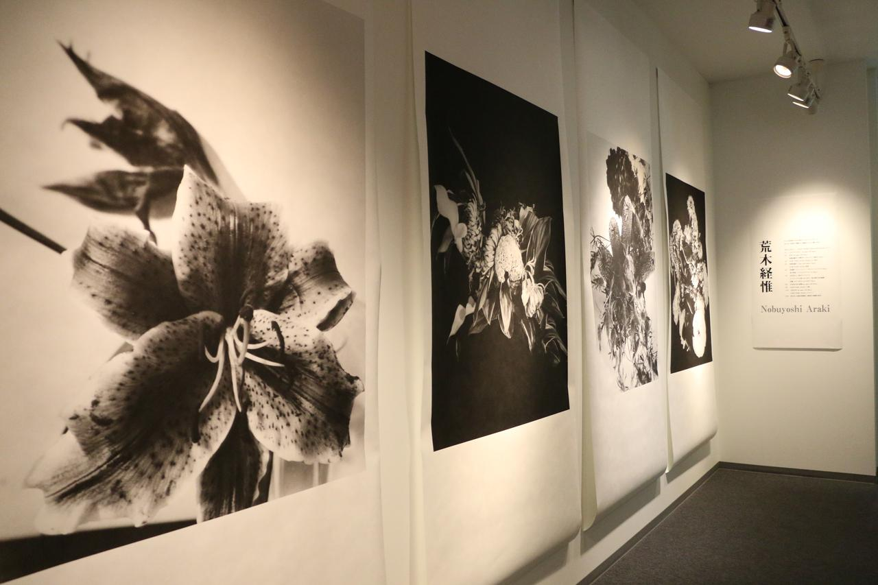 画像: ▲展示会場の様子(一部)。 www.epson.jp