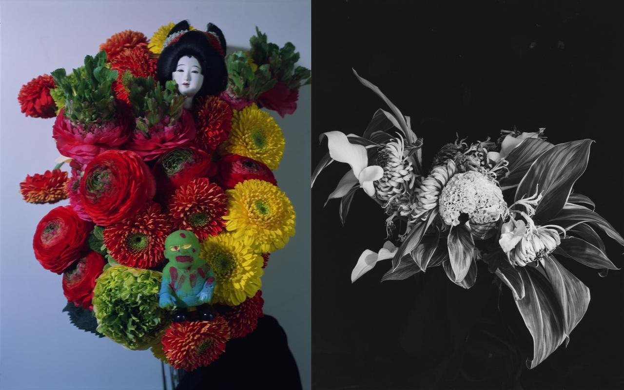 画像1: www.epson.jp