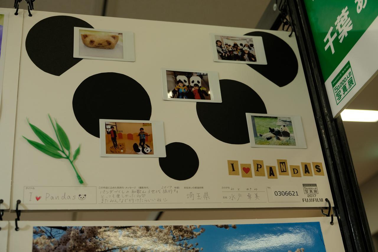 画像: チェキの組写真もたくさん展示されている。さすが富士フイルムの写真展だ!