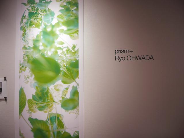 画像1: 大和田 良 写真展 『prism+| prints』は7月18日~29日に開催されます。表参道ピクトリコショップ&ギャラリーのオープニング企画展です。
