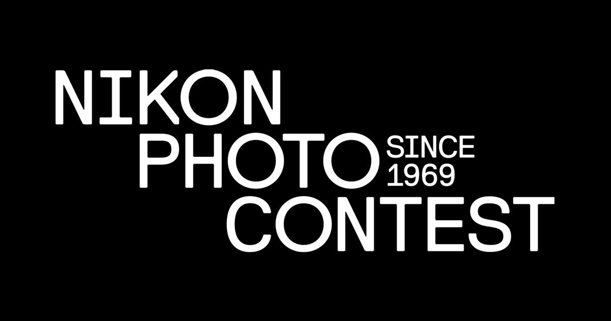 画像: Nikon Photo Contest
