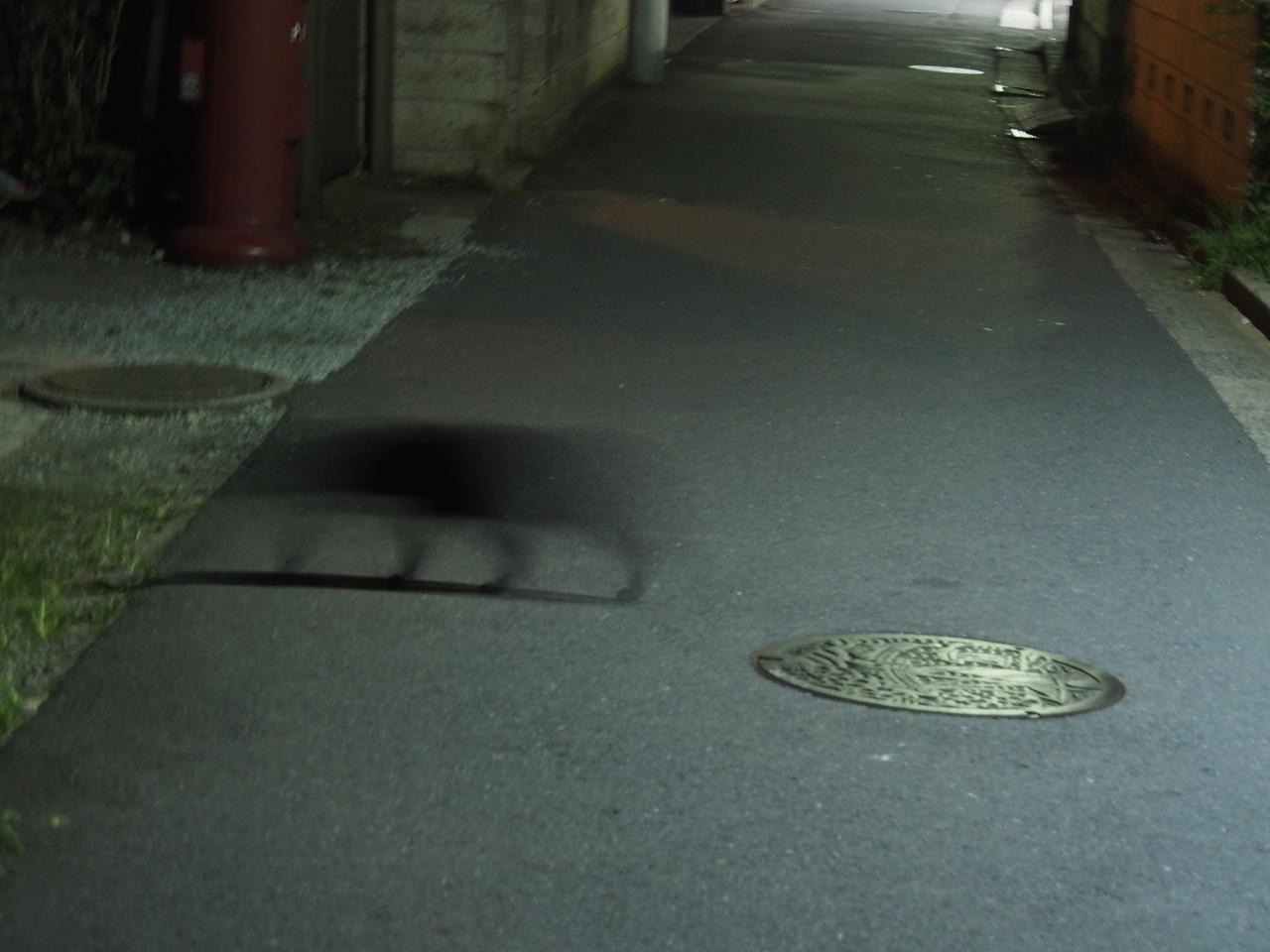 画像: クロネコが横切る路地。夜のお墓とかも同様。そもそも暗すぎです。コントラストなんてあったモンじゃない。ここで認識したらネタですね。まあ、それを望んでいる部分もあるんだけど…。