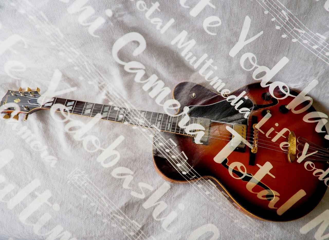 画像: ヨドバシカメラの紙袋とギター。なんでギターと犬ばかりなのかというと、まあ、そういうことです。