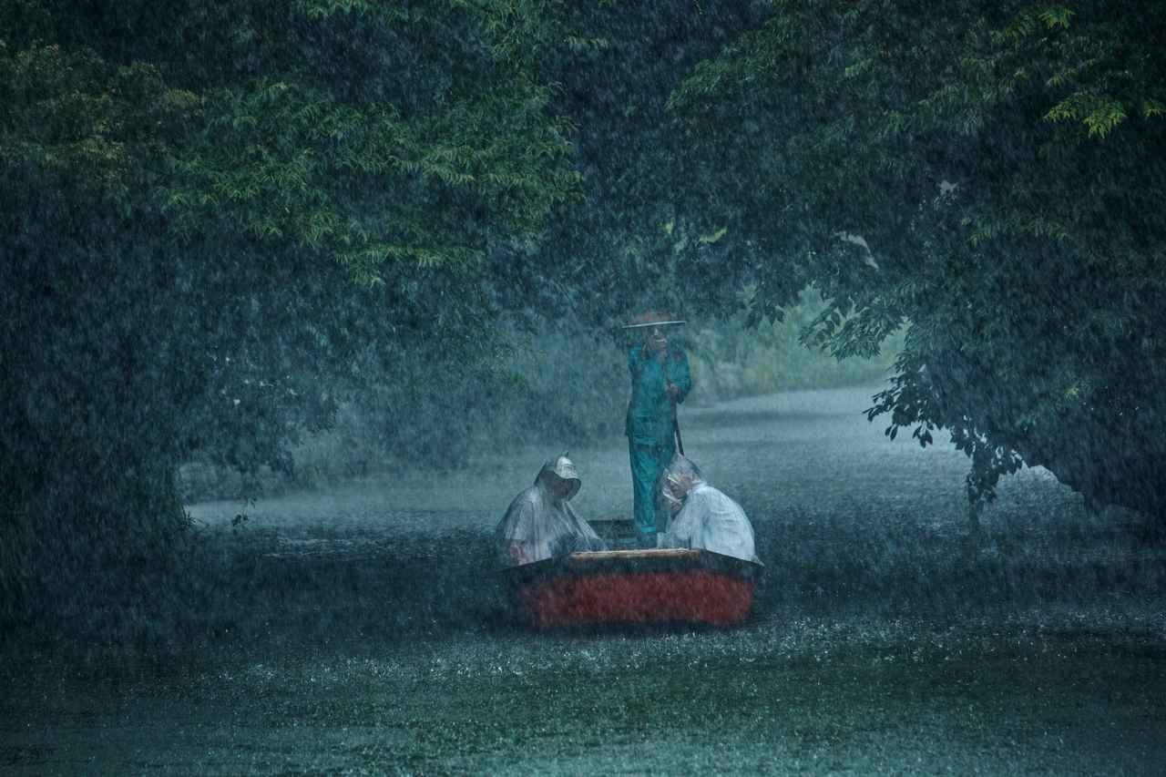 画像: ▲自由写真部門グランプリ作品「霖雨」西村 美代子さん。 www.fujifilm.co.jp