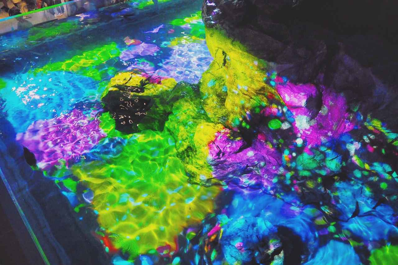 画像: ▲Instagramより。他の作品をご覧になりたい方は写真をクリックしてください。 www.instagram.com