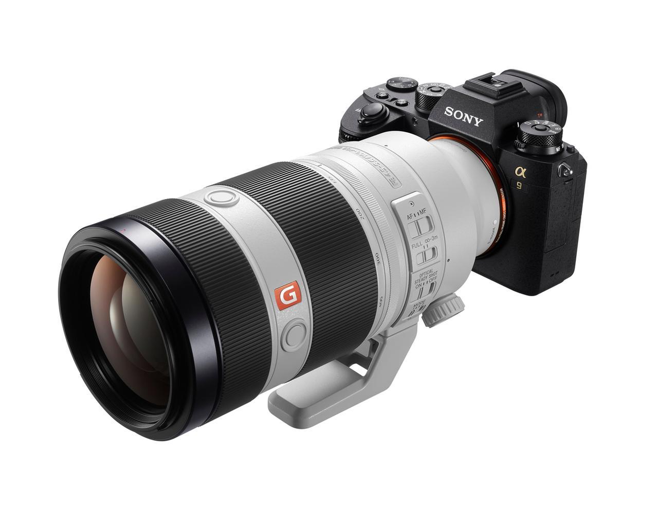 画像: ▲撮影機材はα9+FE 100-400㎜ F4.5-5.6 GM OSS。ミラーレス機は動体撮影に弱いという常識を覆し、高精細な描写力を見せつけてくれた。詳細は写真をクリックしてください。 www.sony.jp