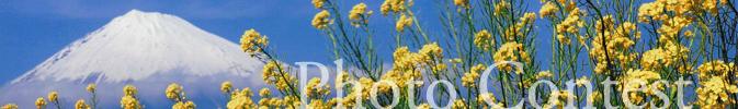 画像: 富士山観光交流ビューロー [静岡県富士市・富士宮市の観光 コンベンション 富士山情報など]