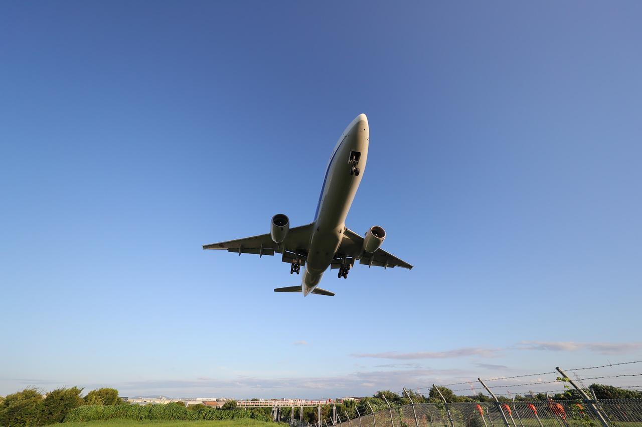 画像: *作品はイメージです。伊丹空港の周辺で撮影しましたが、当日はこの場所で撮影するか未定です。