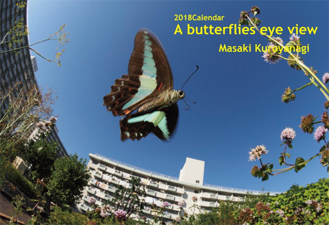 画像: ▲黒柳昌樹さんの「A Butterflies eye view」。 mm-style.jp