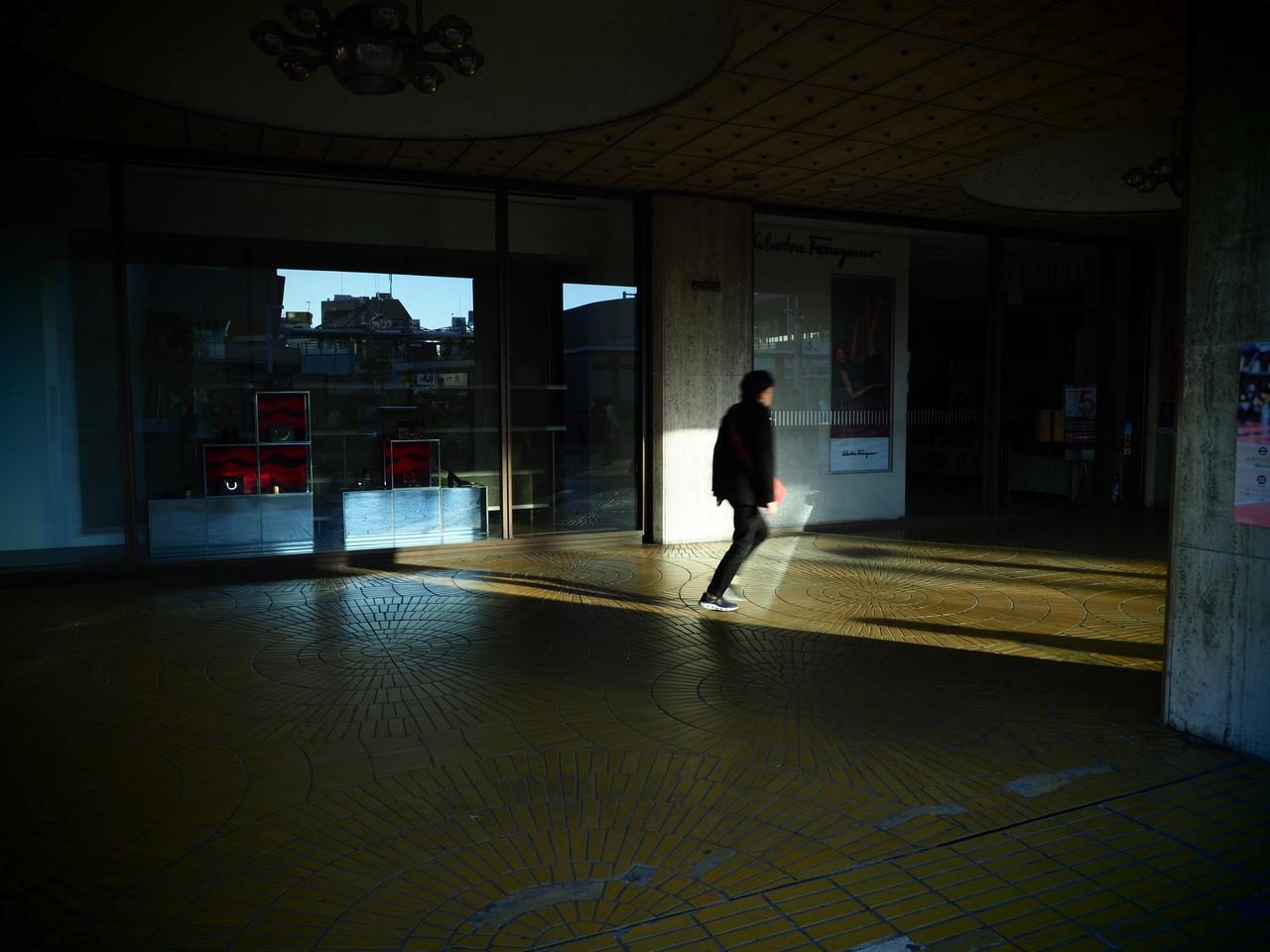 画像: トイフォト