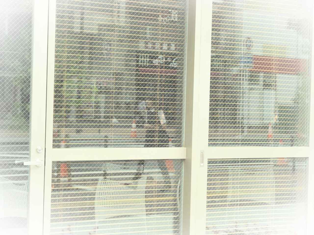 画像: デイドリーム+ホワイトエッジ
