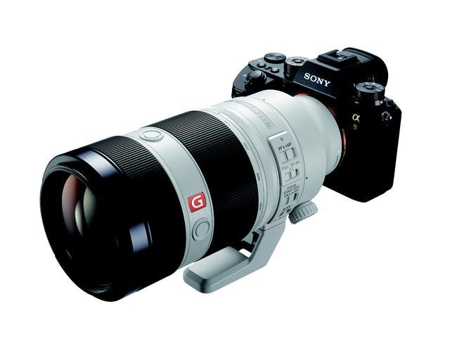 画像1: 今回の撮影で使用した機材はα9+FE 100-400㎜ F4.5-5.6 GM OSSとRX10 Ⅳ