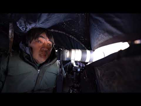 画像: 月刊カメラマン2018年2月号「ソニーα7R Ⅲでシマエナガを撮る!」 youtu.be