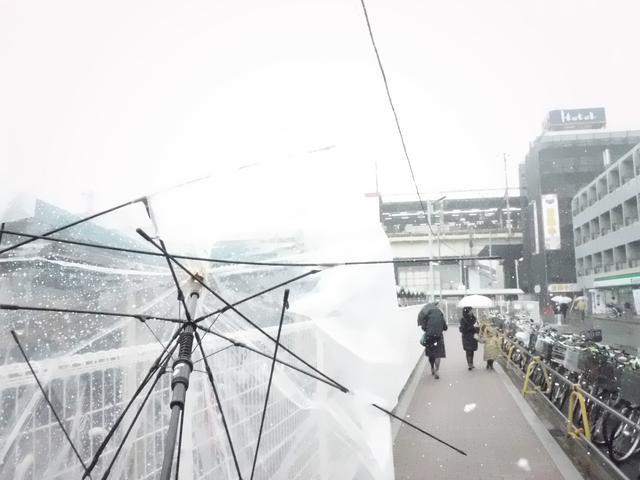 画像: いかにも全天候カメラの出番のようだが、ホントに寒い時は写真なんぞ撮る気にはなりませんのや。それどころか強風でカサがバラバラになって大変!