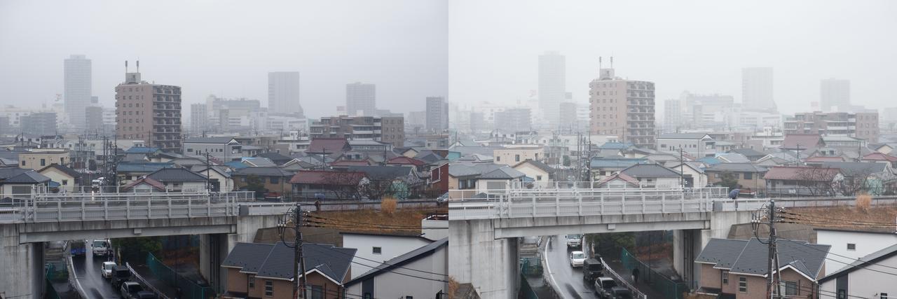 画像: やっと雨が降りました!